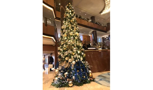 横浜シェラトンクリスマスツリー