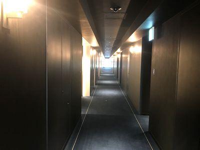 ホテルメトロポリタン川崎廊下