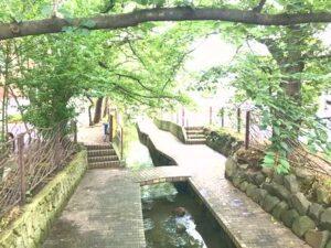 中原区武蔵小杉小川